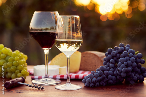 Two glasses of white and red wine Poster