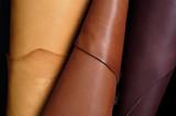 skins sample, leather - 91085914