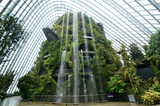 Fototapety Cloud Forest at Gardens by the Bay in Singapore