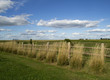 Country Fence on Edge of Newton Iowa Arboretum