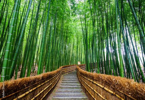 Zdjęcia na płótnie, fototapety na wymiar, obrazy na ścianę : Path to bamboo forest, Arashiyama, Kyoto, Japan