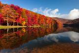 Fototapety Sherando Lake, Virginia