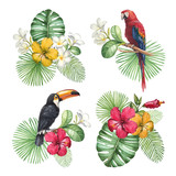 Fototapety Watercolor illustrations of tropical flowers and birds