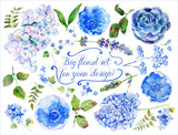 Fototapety Set of different blue, cyan hydrangea, lavender, currant for design. Watercolor flowers, leaves. Set of floral elements to create compositions.