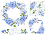 Set of different blue, cyan hydrangea, lavender, currant, frame, decorative corners and one seamless pattern for design. Watercolor flowers, leaves. Floral set for your design. - 91551984