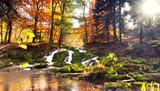 Fototapety Herbst im Harz