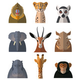 Icons of african animals3