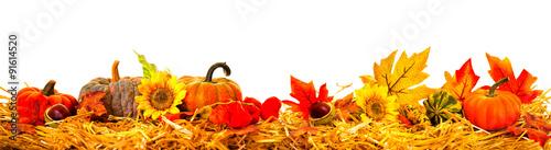 Zdjęcia na płótnie, fototapety, obrazy : Herbst bordüre Rand