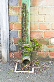 Rusty drainpipe poster