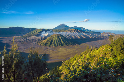 Foto op Plexiglas Indonesië Bromo volcano at sunrise,Tengger Semeru National Park, East Java, Indonesia with beautiful flower as foreground. View from Penanjakan 2