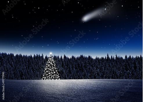 Fototapeta Leuchtender Weihnachtsbaum im Wald