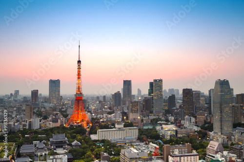 Tokyo city skyline at sunset, Japan Poster