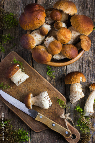 Poster boletus mushrooms on rustic background