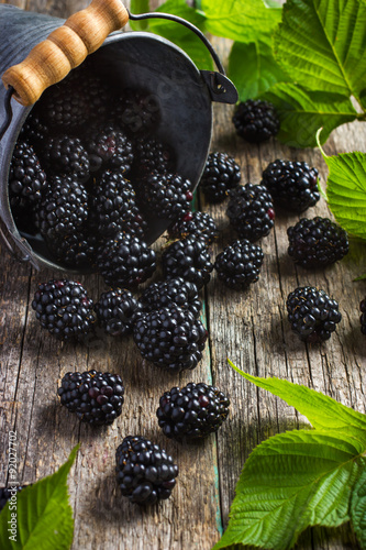 Plagát Fresh blackberry on wooden background