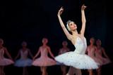 Fototapety Prima ballerina white swan