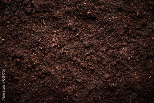 Obraz na płótnie Gleba