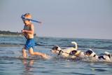 Child playing with dogs in the water poster