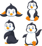Collection of cartoon penguin isolated on white background