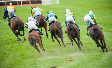 race horses taking a sharp turn on the race track