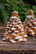 Obrazy na płótnie, fototapety, zdjęcia, fotoobrazy drukowane : gingerbread christmas tree