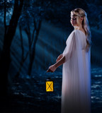 Elven girl with lantern at night forest poster