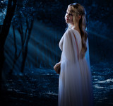 Elven girl at night forest poster