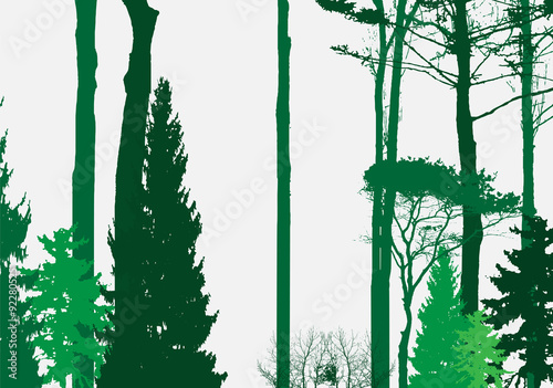 Image of Nature. Tree Silhouette. Eco banner. Vector - 92280525