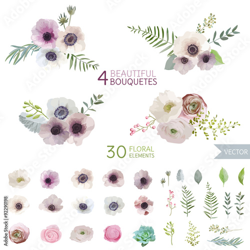 Flowers and Leaves - in Watercolor Style - vector