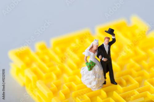 結婚と迷路 Poster