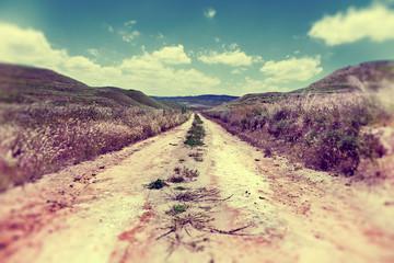 Camino por el campo.Paisaje y naturaleza