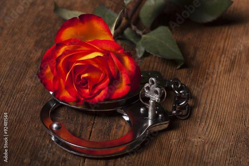 Handschellen und eine Rose