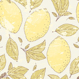 Vintage seamless pattern with hand drawn lemon and leaves. Doodle fruit for package or kitchen design