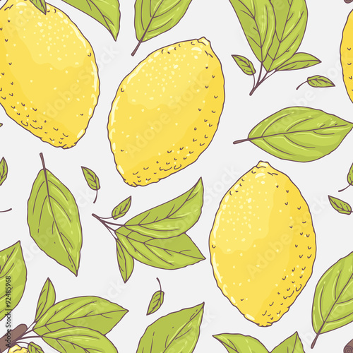 Seamless pattern with hand drawn lemon and leaves. Doodle fruit for package or kitchen design - 92485968