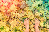 Naked barefoot on leaves in park - Freedom wanderlust autumn lifestyle poster