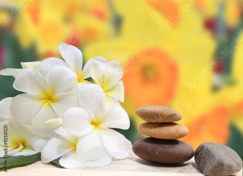 Zen spa concept background - Zen massage stones with frangipani plumeria flower Poster
