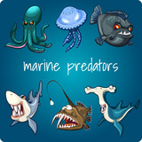 Marine predators: shark, piranha and other