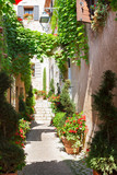 Fototapety beautiful old town of Provence