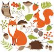 Obrazy na płótnie, fototapety, zdjęcia, fotoobrazy drukowane : Woodland Animals Set