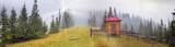 Radiance misty forest poster