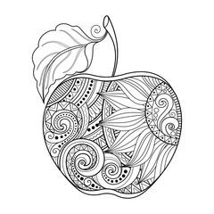 Vector Monochrome Contour Apple. Hand Drawn Decorative Fruit