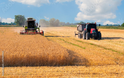 Harvester combine and tractor harvesting wheat on sunny summer day Poster