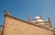 Постер, плакат: Mohammed Ali or Alabaster Mosque Saladin Citadel Cairo Egypt unconventional angle shot