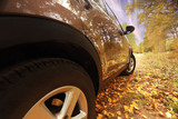 fragment the car in the autumn landscape