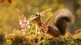 Fototapety big tail