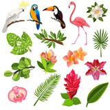 Fototapety Tropical birds and plants pictograms set