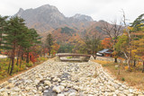 Stone river bed at Seoraksan national park during autumn season. poster
