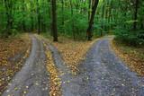 vidlice silnice