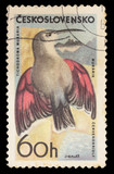 Postage stamp printed in Czechoslovakia showing a Wallcreeper, Tichodroma muraria, a small bird found throughout the high mountains of Eurasia poster