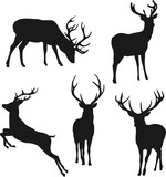 silhouettes of deer