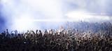 Crowd at concert - 93251301